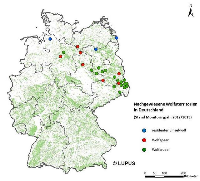 Current occurrence of wolf packs in Germany; source: www.wolfsregion-lausitz.de