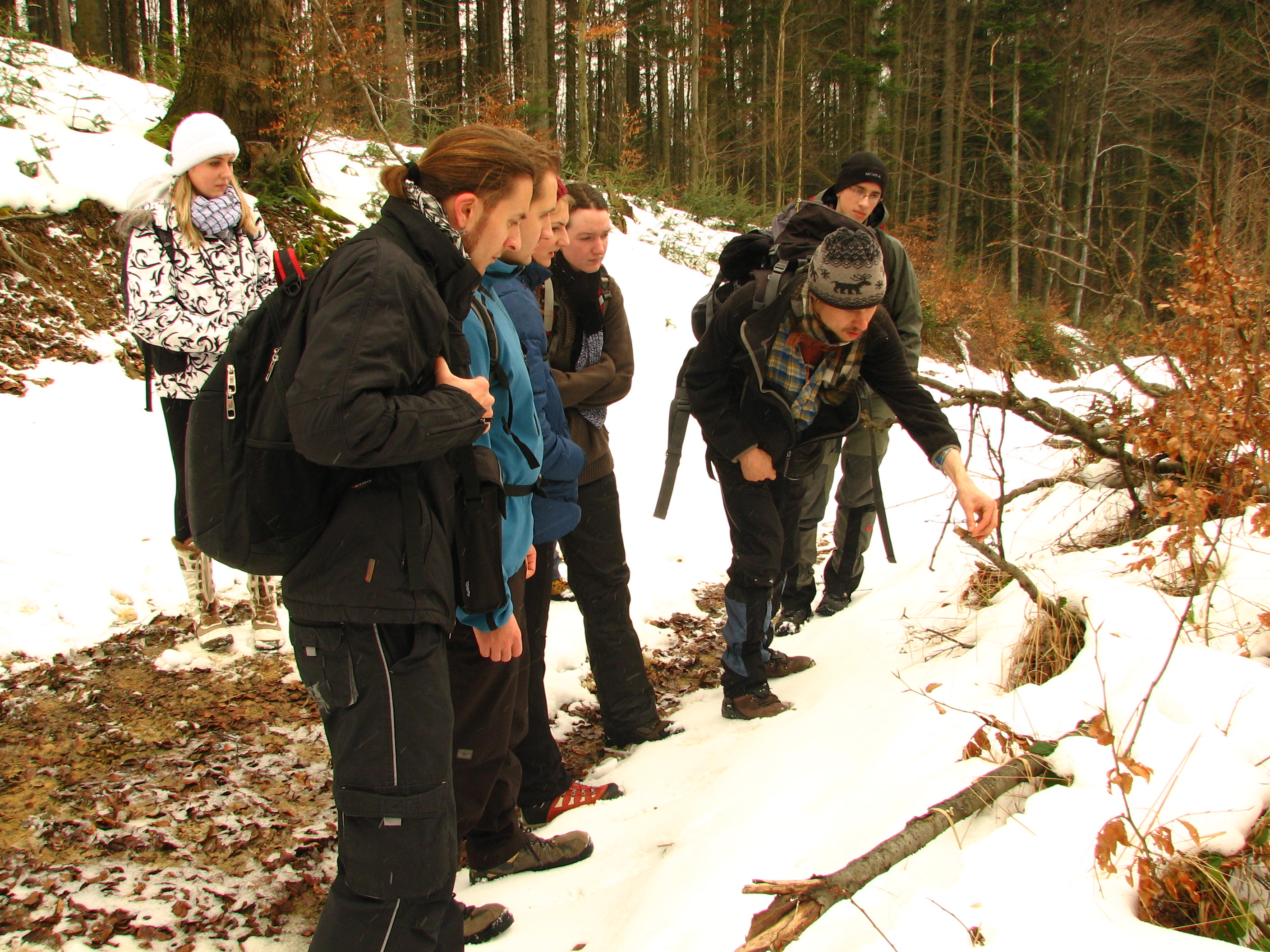 Group of volunteers monitoring occurrence signs of large carnivores