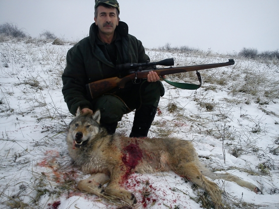 A hunter posing with a dead wolf